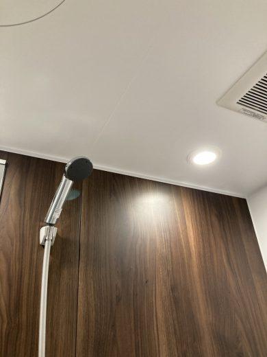 メタルシャワーヘッド(風呂)
