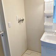 洗面化粧室(左扉:浴室)